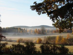 Mindfulness and Consciousness Retreat Sweden